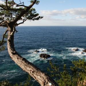 冬の日本海 たいめいる2012年2月号