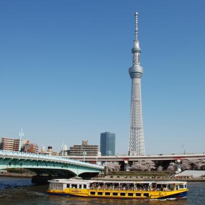 東京スカイツリー たいめいる2012年6月号