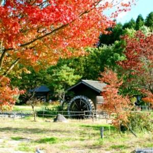 福島県二本松市「安達ヶ原ふるさと村」 たいめいる2013年11月号