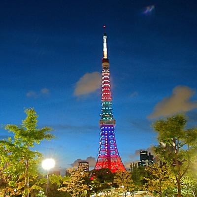 夜の東京タワー たいめいる2014年9月号